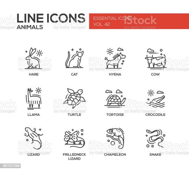 Animals line design icons set vector id587522056?b=1&k=6&m=587522056&s=612x612&h=y5ru1l4r4uqn fj4n7l8upn3en9rozhiabyx9cklwve=