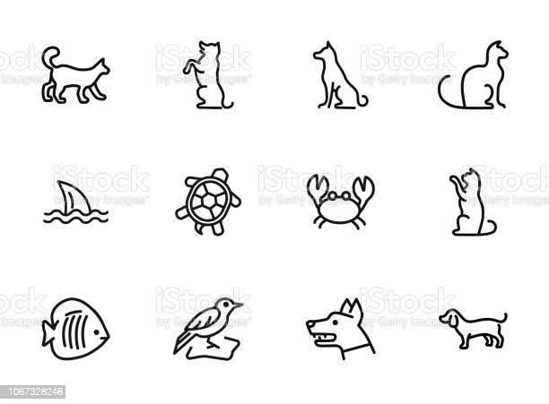 Animals line icon set vector id1067328246?b=1&k=6&m=1067328246&s=612x612&h=yrodjgymy1hbxubqbtd6 lyjessxc8 v76g2hqgb39c=