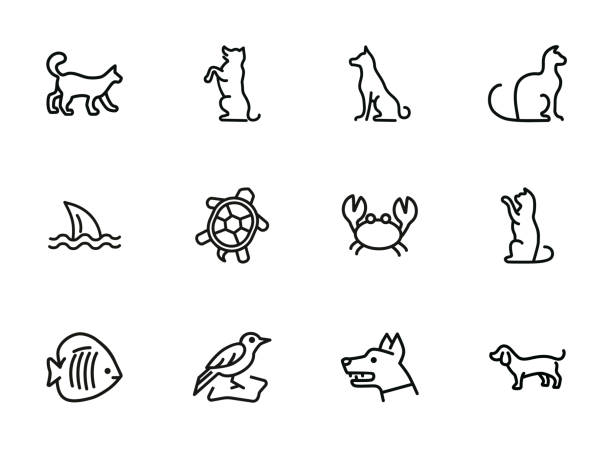 Animals line icon set Animals line icon set. Cat, dog, shark, turtle. Nature concept. Can be used for topics like wildlife, pets, sea life stunt stock illustrations