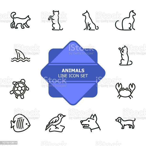 Animals line icon set vector id1073510814?b=1&k=6&m=1073510814&s=612x612&h=blsy4jc5hvola2ygkr47qineeu hnwjqyxlmqgmbq7g=
