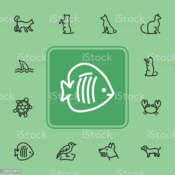 Animals line icon set vector id1081224610?b=1&k=6&m=1081224610&s=612x612&h=ets1p20lc1k5p2evq3bwotcaum7whhdb1kbic fzjay=