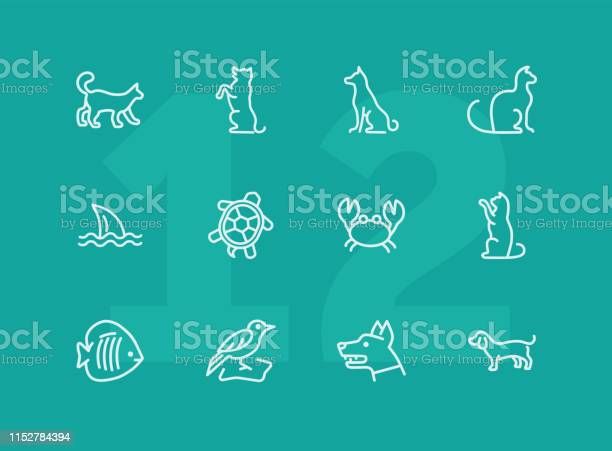 Animals line icon set vector id1152784394?b=1&k=6&m=1152784394&s=612x612&h=upelx 9etcoz7ndggece5oqbijlbvs4jk3noagn2knu=