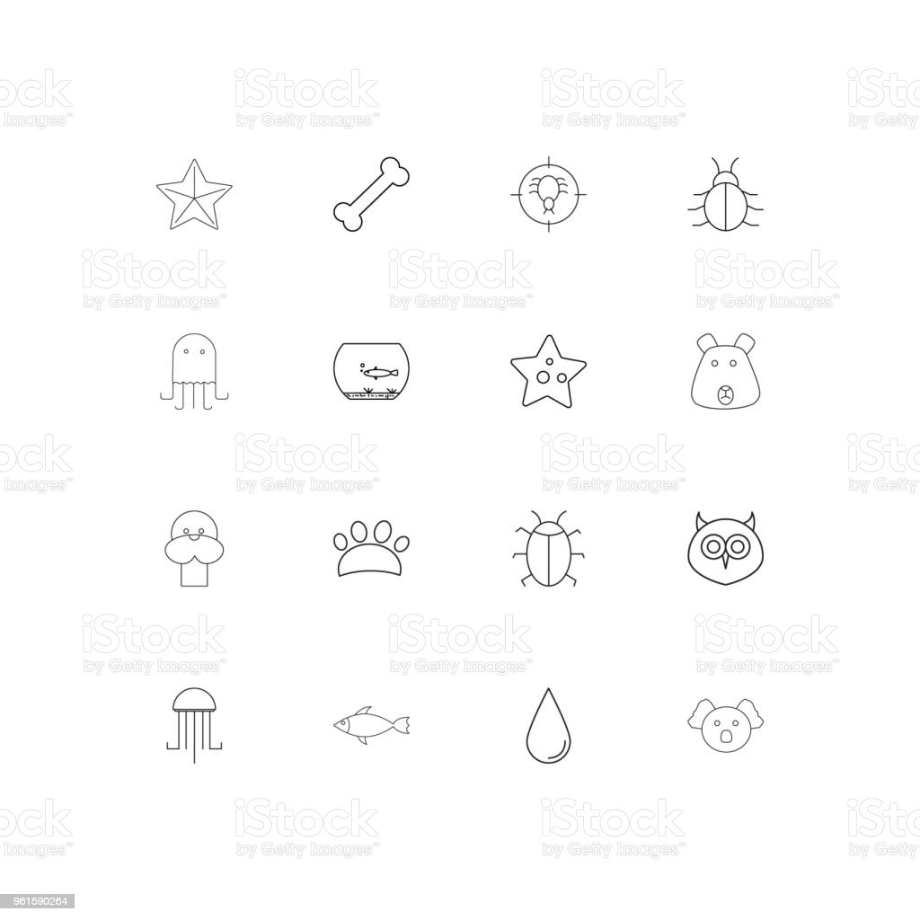 Animals linear thin icons set. Outlined simple vector icons vector art illustration