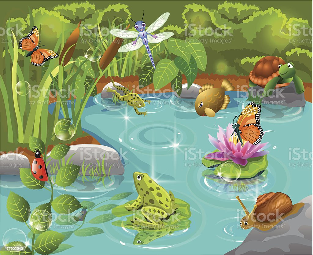 animals living in the pond vector art illustration