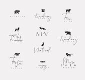 Animals mini floral graphic signs