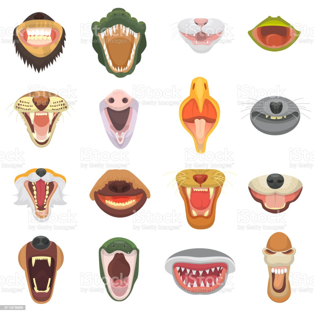 Animals mouth vector open jaw with teeth or fangs of roaring animals angry lion or cat and laughing bear with aggressive shark illustration set of animalistic beast isolated on white background vector art illustration