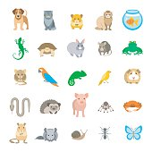 Animals pets vector flat colorful icons set. Cartoon illustrations of various domestic animals. Mammals, rodents, amphibian, insects, birds, reptiles, which people take care of at home. Isolated on white.