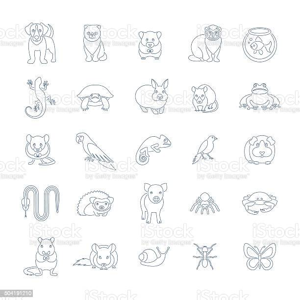 Animals pets vector flat thin line icons set vector id504191210?b=1&k=6&m=504191210&s=612x612&h=eruvsrmybzugiruovjmi95i pr2gxfrhdq9x11cjjvg=