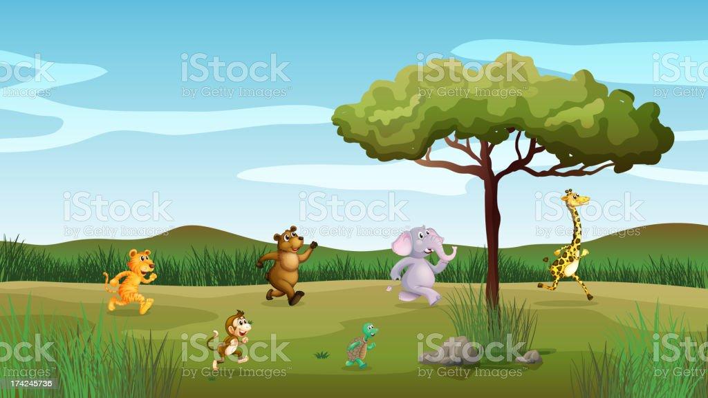 Animals racing at the hill royalty-free stock vector art