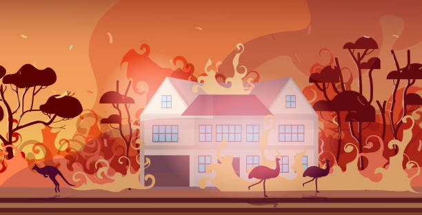 bildbanksillustrationer, clip art samt tecknat material och ikoner med djur som kör från skogsbränder i australien wildfire brinnande hus naturkatastrof concept intensiv orange flames horisontell - skog brand