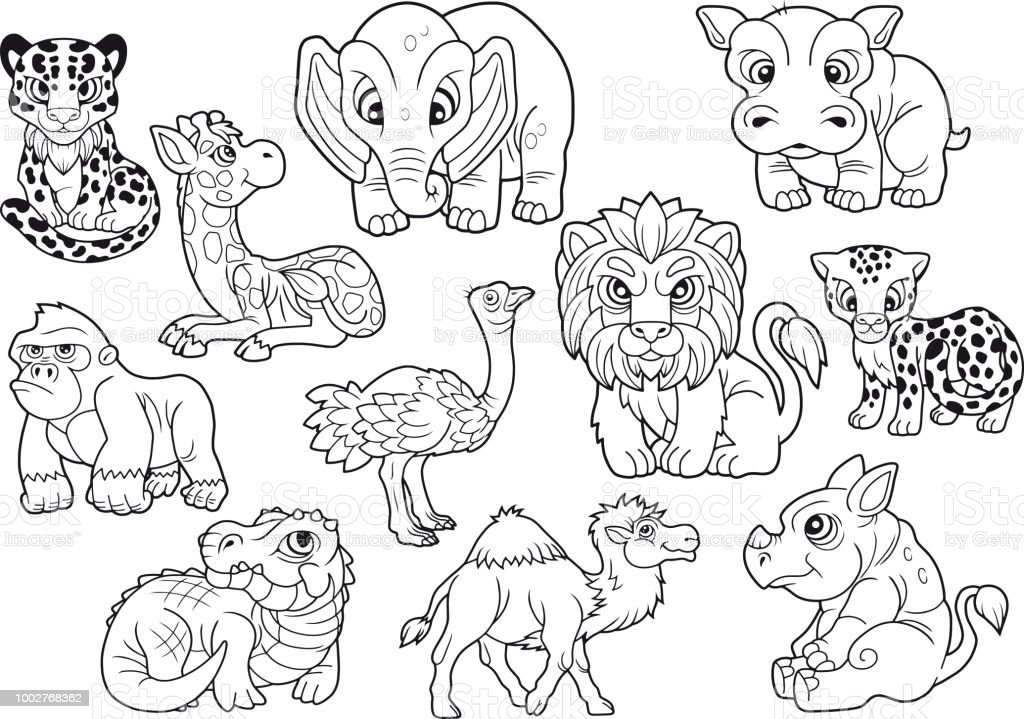 Animals Set Of Cute Vector Images Coloring Book Royalty Free