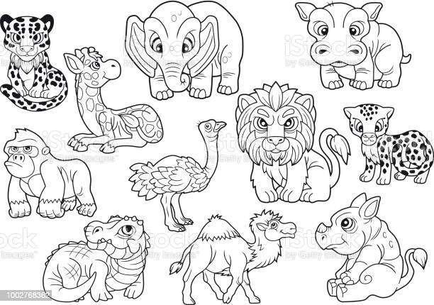 Free pachyderm Images, Pictures, and Royalty-Free Stock