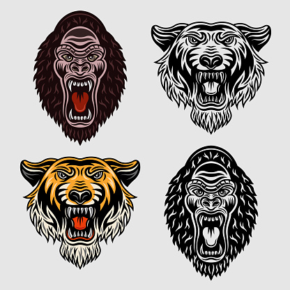 Animals set of vector objects in two styles colored and black and white. Tiger head and gorilla cartoon characters
