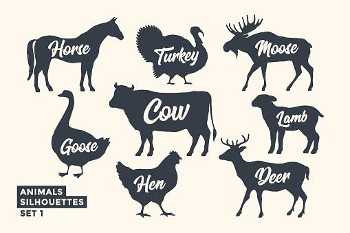 Animals silhouette set. Black-white silhouette of animals