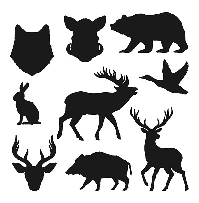 Animals silhouettes, hunting icons wild bear, deer