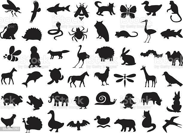 Animals silhouettes set vector id533992252?b=1&k=6&m=533992252&s=612x612&h=4oazdso0aeikow nbye9gab3wv4hh8wgxpjkp5egohu=