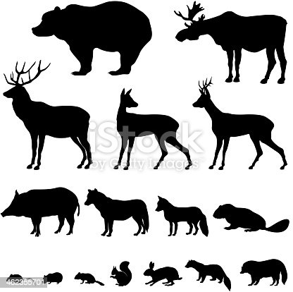 Animals living in europien forest. Vector set of silhouette isolated on white background.