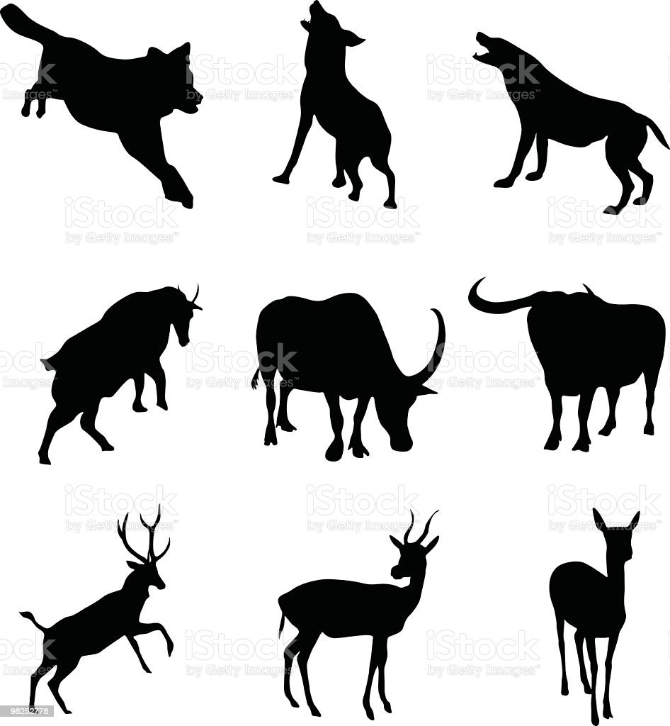 Animals to use in your design royalty-free animals to use in your design stock vector art & more images of animal