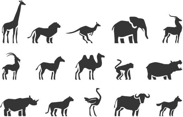 animals vector icons set - bergziegen stock-grafiken, -clipart, -cartoons und -symbole