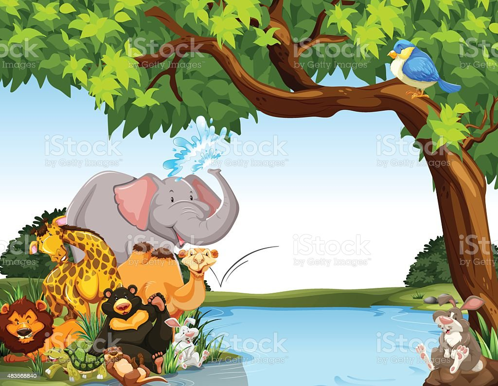 Animals vector art illustration
