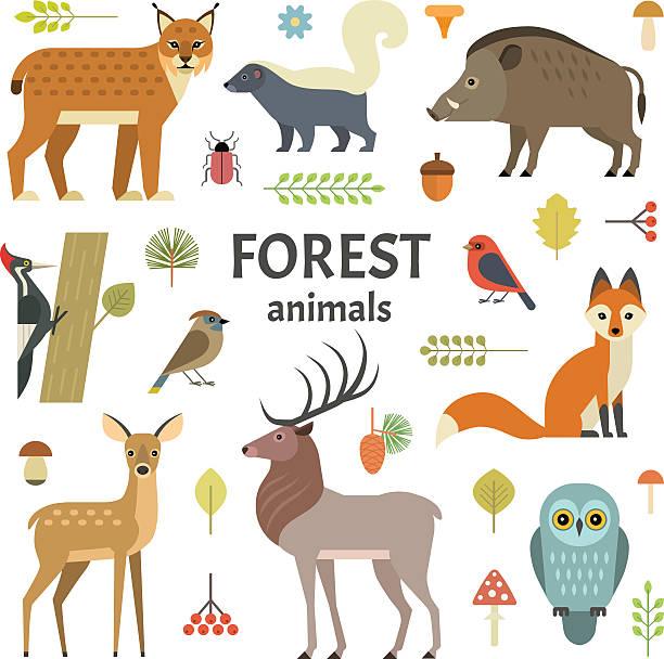 Os animais  - ilustração de arte em vetor
