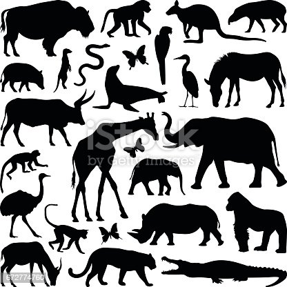 Zoo animal collection - vector silhouette illustration