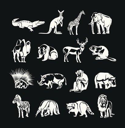 Animals vector white doodle outline icon set