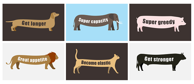 Animals walking with long tummy, side flat 3D icon design