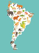 Animals world map, Sourth America. Colorful cartoon vector illustration