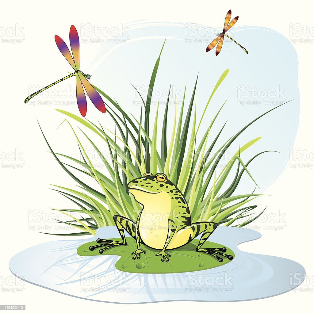 Animated frog seated on a lily pad in front of some grass stock animated frog seated on a lily pad in front of some grass royalty free animated izmirmasajfo