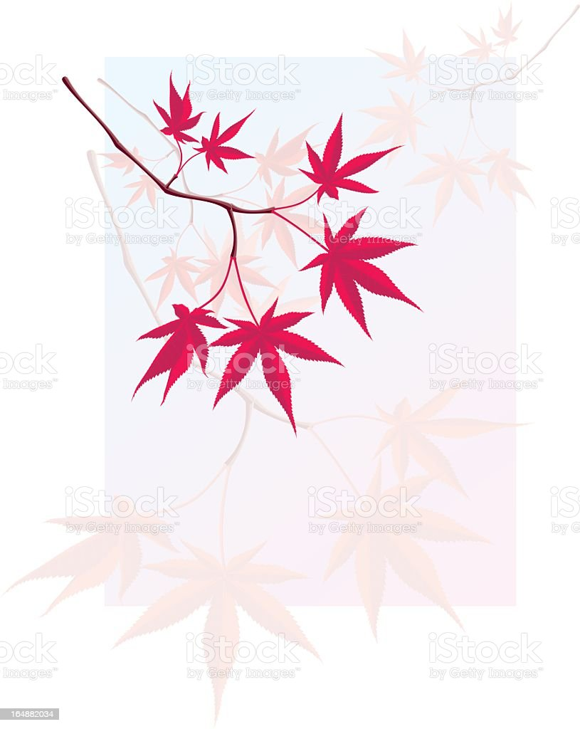Animated red Japanese maple branch hanging with watermark royalty-free stock vector art