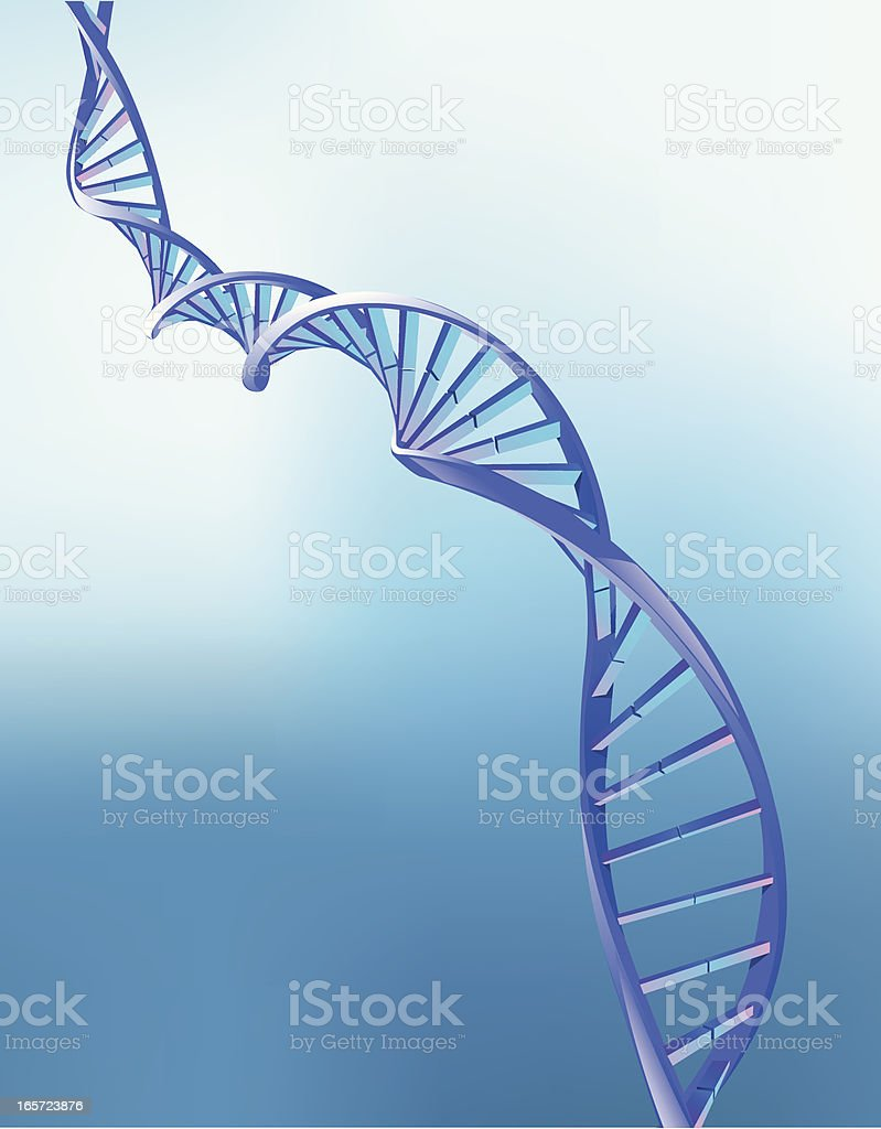 Animation of double helix strand of DNA vector art illustration