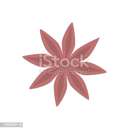 istock Anise star isolated on white in a hand-drawn style. 1285290118