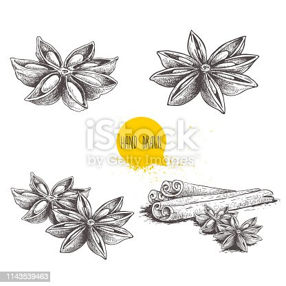 Anise star sketches set. Single, batch and composition with cinnamon sticks. Herbs and condiment retro style hand drawn collection. Vector illustrations isolated on white background. EPS10 + JPEG preview.