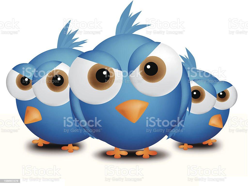 Annoyed birds