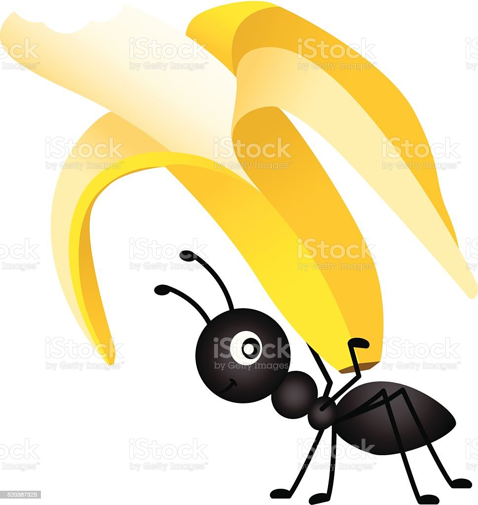 Ant Carrying a Banana vector art illustration