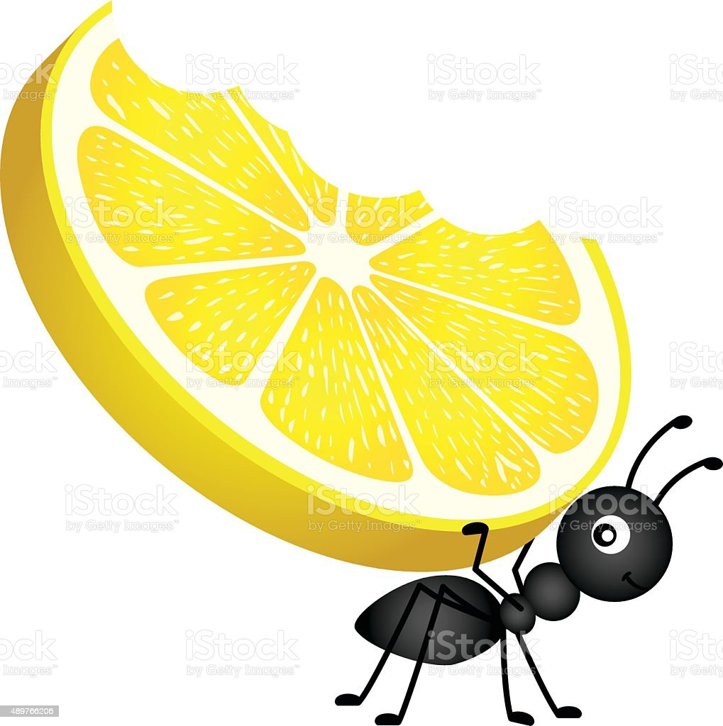 Ant carrying a lemon vector art illustration