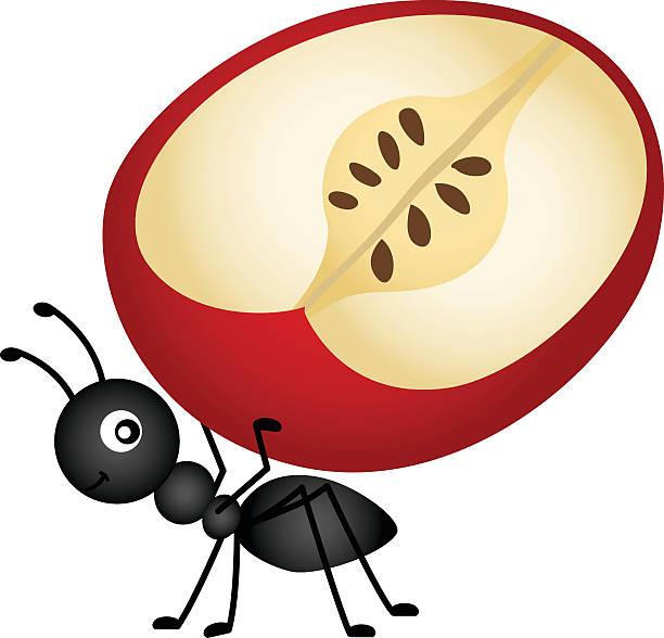 Ant carrying apple slice vector art illustration