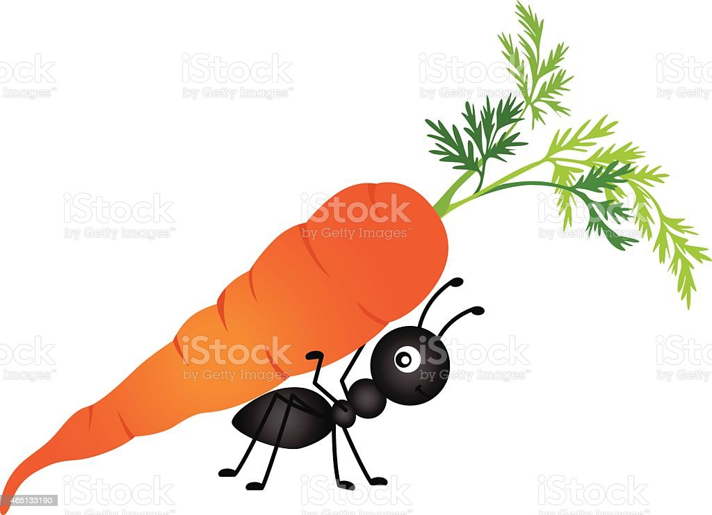 Ant Carrying Carrot vector art illustration