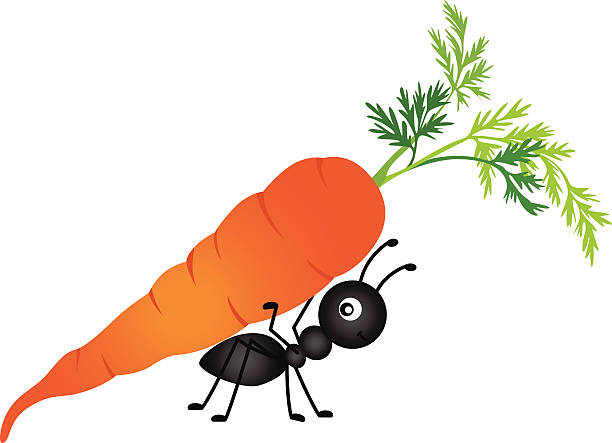 Ant Carrying Carrot vector art illustration