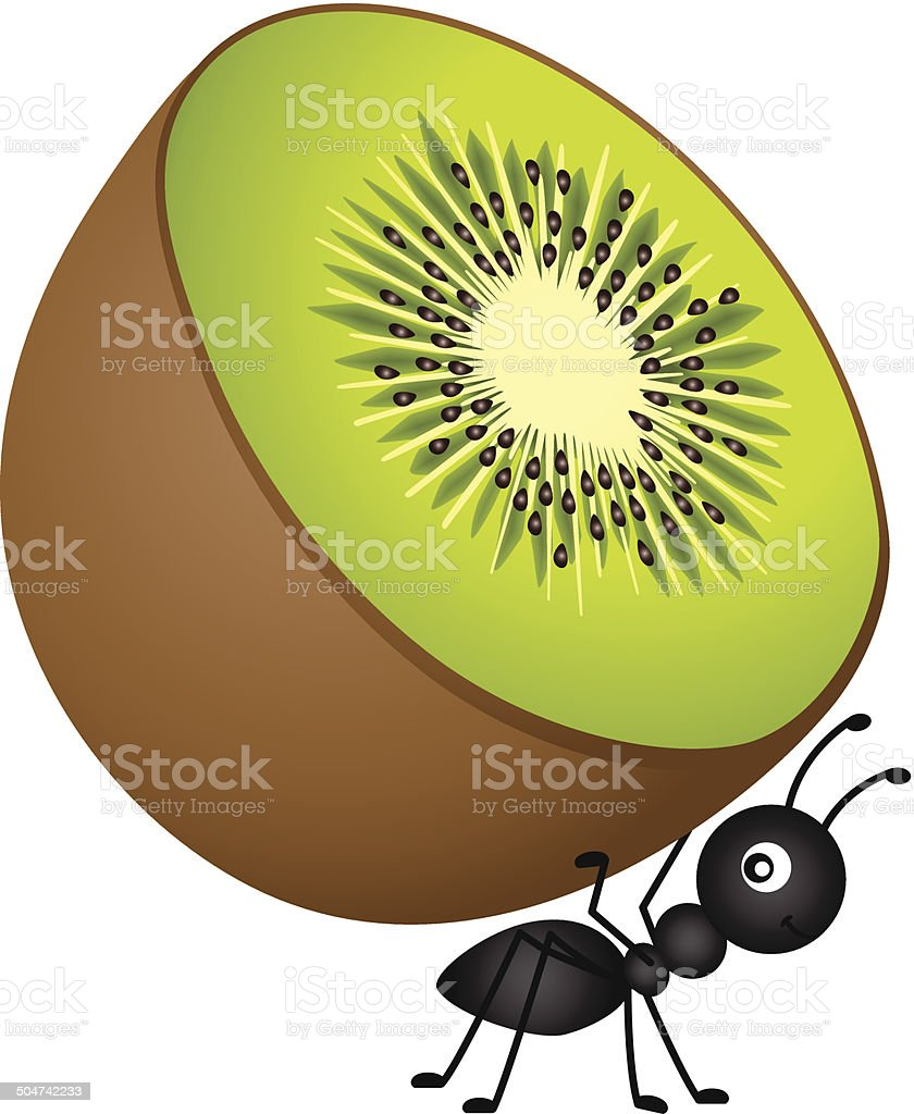 Ant Carrying Kiwi vector art illustration