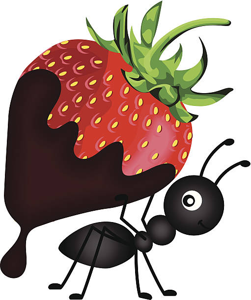Ant carrying strawberry with chocolate sauce vector art illustration