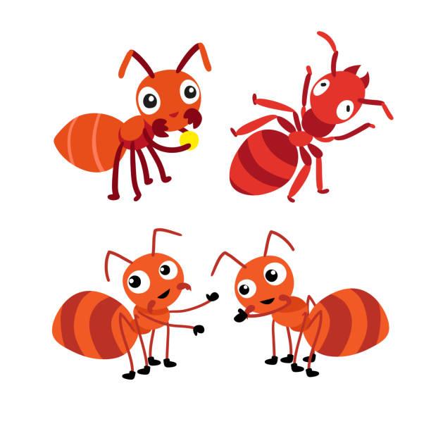 ant character vector design vector art illustration