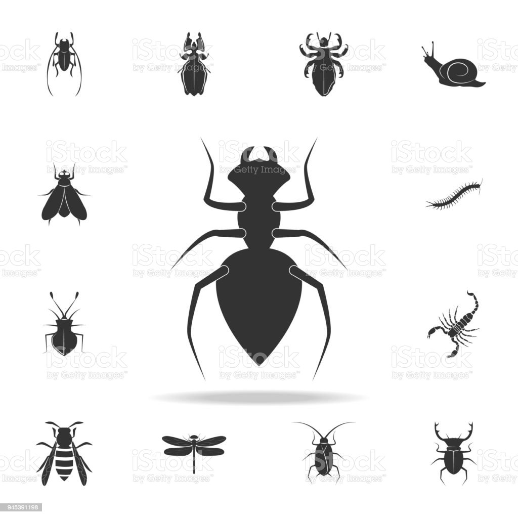 Ant Detailed Set Of Insects Items Icons Premium Quality