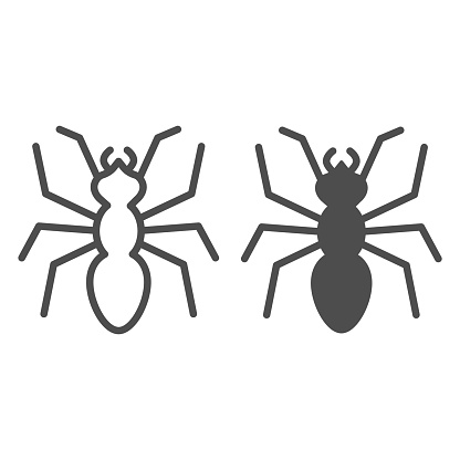 Ant line and solid icon, Insects concept, emmet sign on white background, Ant silhouette icon in outline style for mobile concept and web design. Vector graphics.
