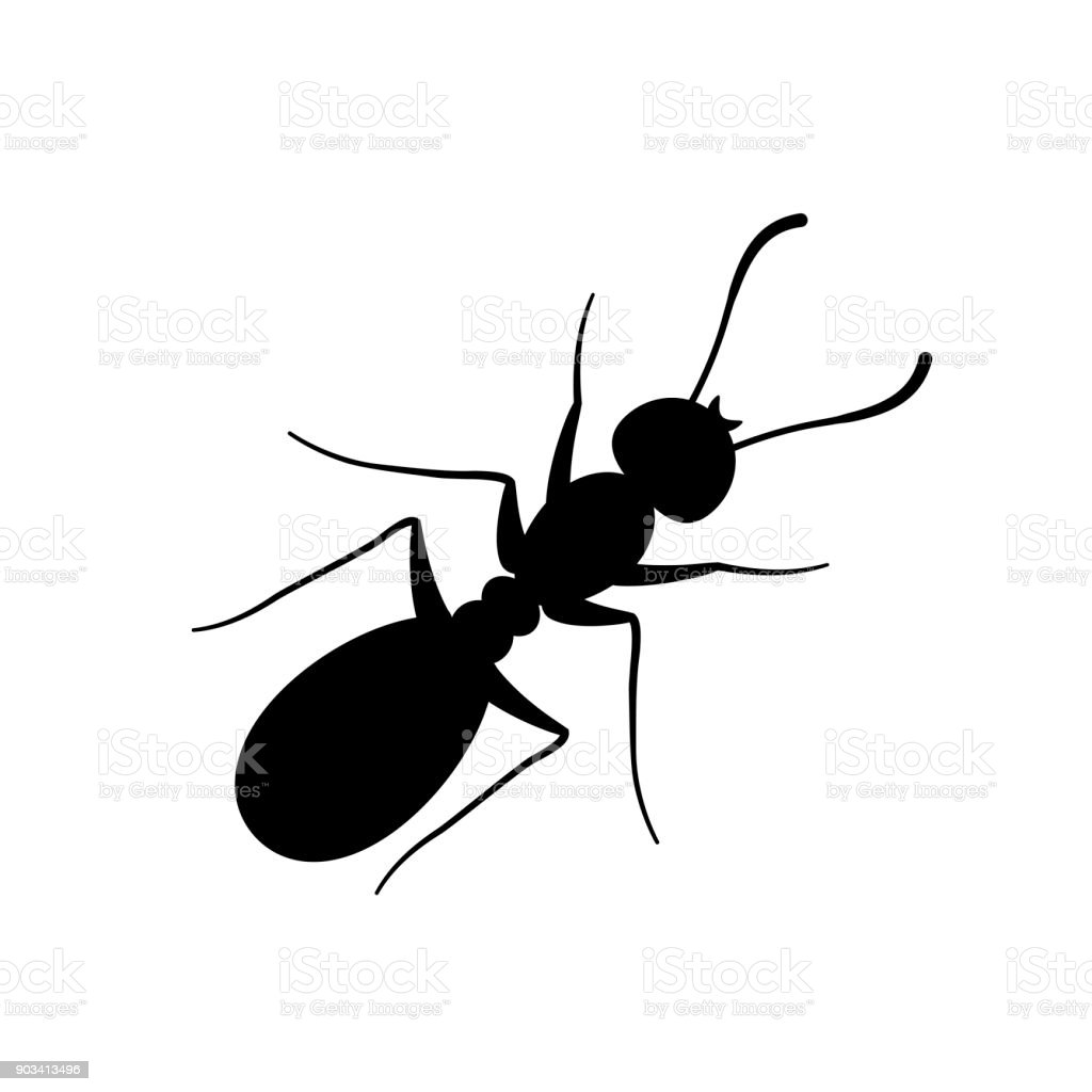 Ant sign black on white vector art illustration