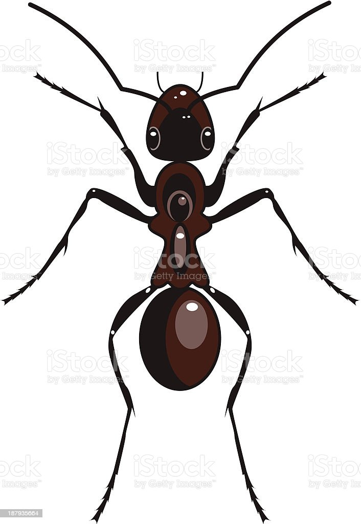 Ant royalty-free stock vector art