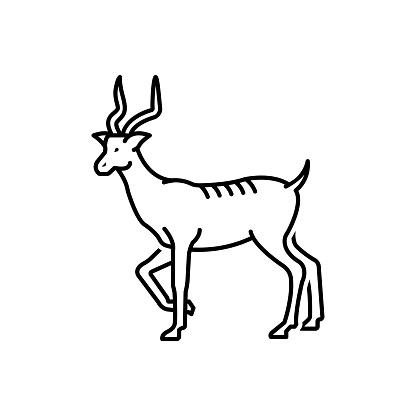 Antelope fast