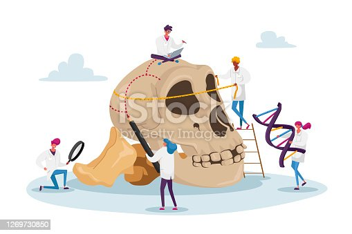 Ancient Anthropology Studying Concept. Tiny Characters Measuring Huge Human Skull with Bones and Dna Spiral. Paleolithic Research Educational Culture Exploration. Cartoon People Vector Illustration