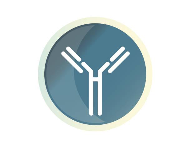 Antibody - Complex Protein - Icon Antibody - Complex Protein - Icon as EPS 10 File antibody stock illustrations